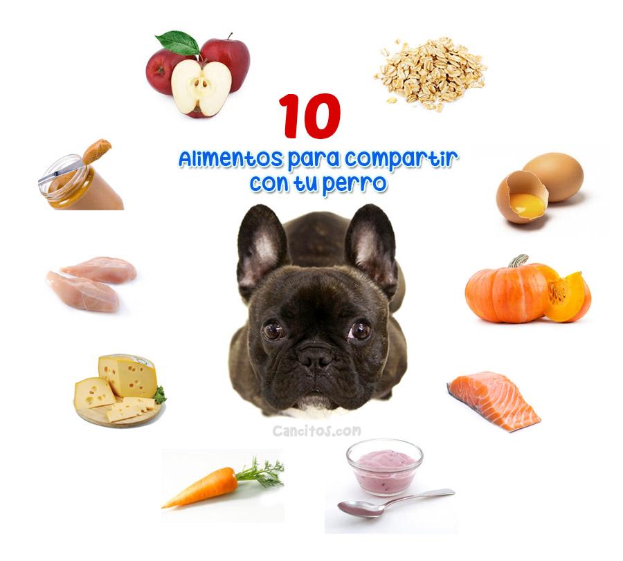 Alimentos permitidos para nuestros perros