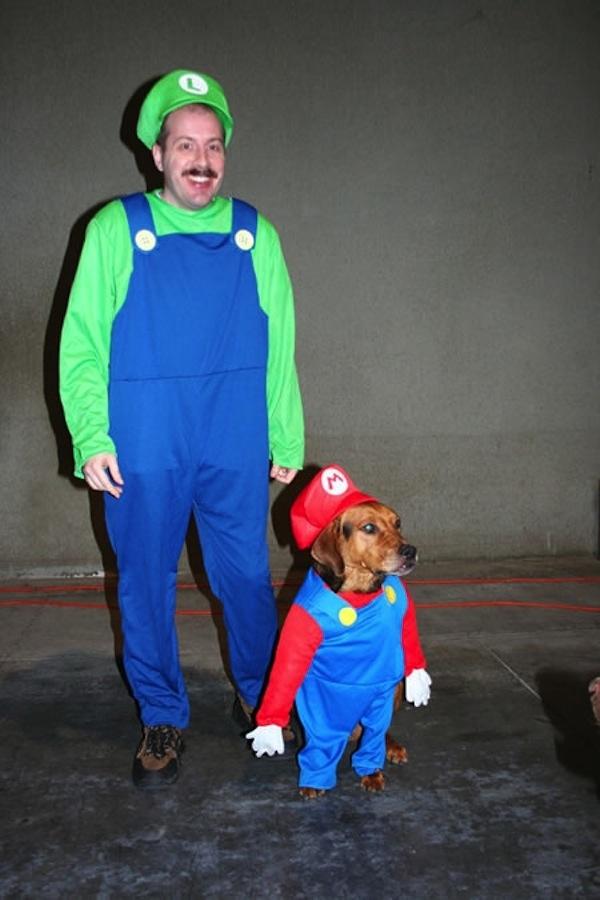 Disfraces para perros en halloween (14)