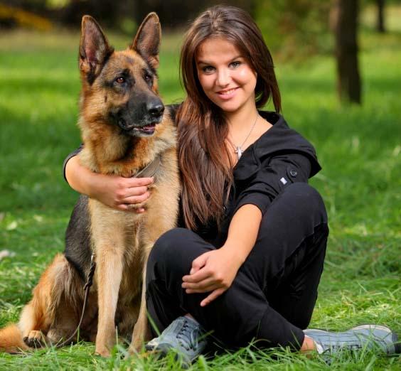 razas de perros de compañía para mujeres
