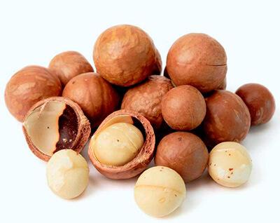 Comer macadamia es malo para los perros