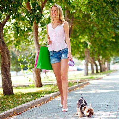 ¿como pasear un perro correctamente?