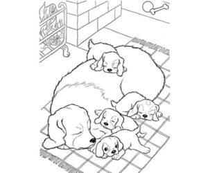 Una perra y sus cachorros