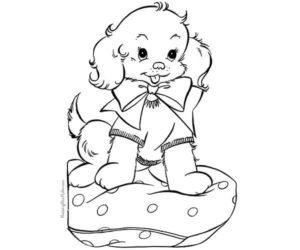 Perro en cojín