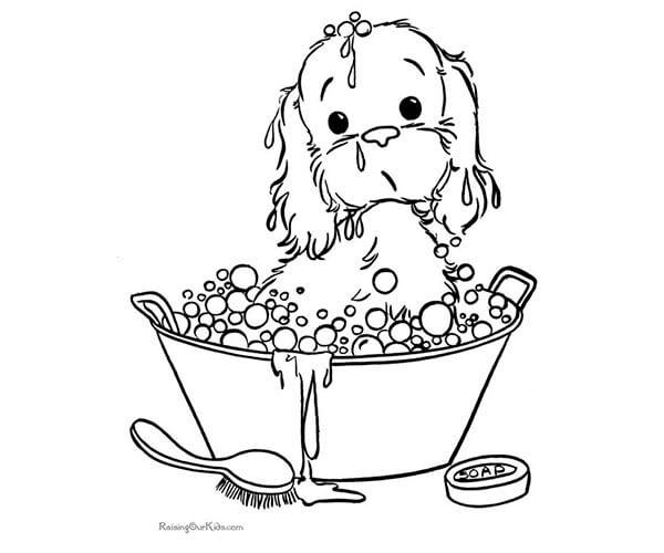 35 Imágenes De Perros Para Colorear E Imprimir Cancitos