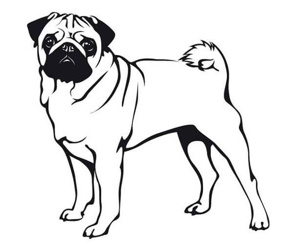 Dibujos Infantiles De Perros Para Colorear: 35 Imágenes De Perros Para Colorear E Imprimir